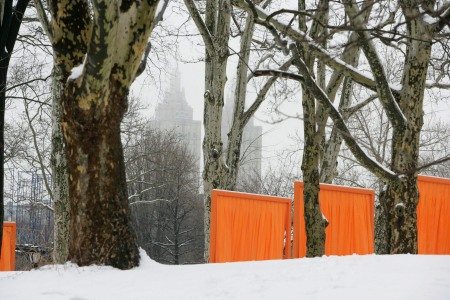 Larrabee, The Gates, Christo and Jeanne-Claude, Central Park, New York, Portrait Photographer